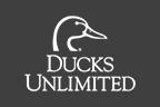 ducks1-2-2
